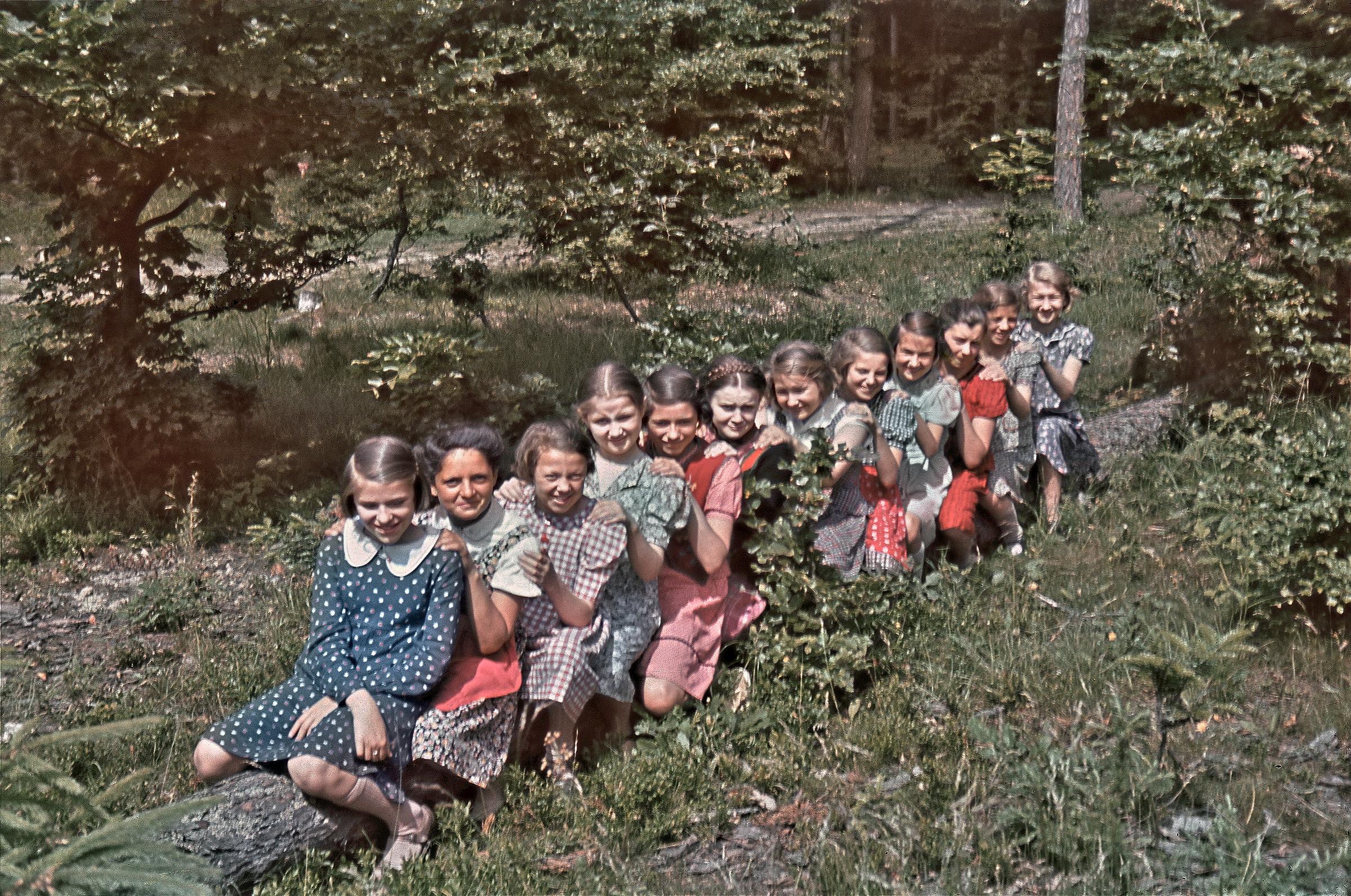Farbfoto der 30er Jahre, Reihe auf Baumstamm